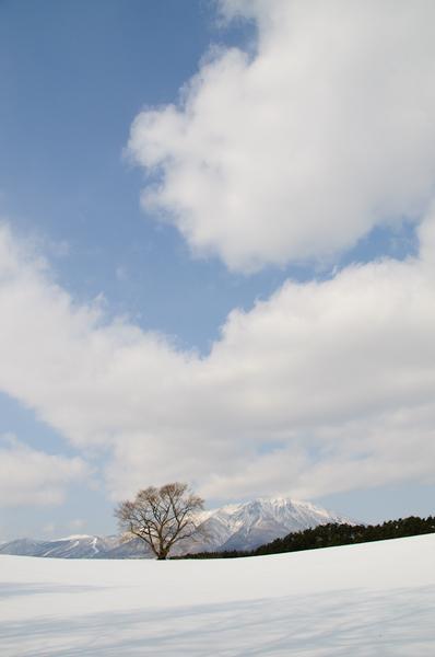 20120304-DSC_3095.jpg